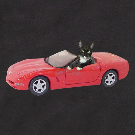 Cat in Red Car