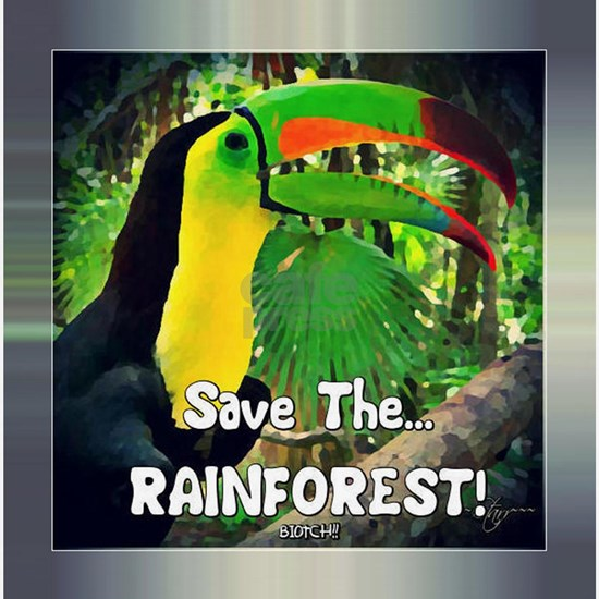 SAVE the RAINFOREST!
