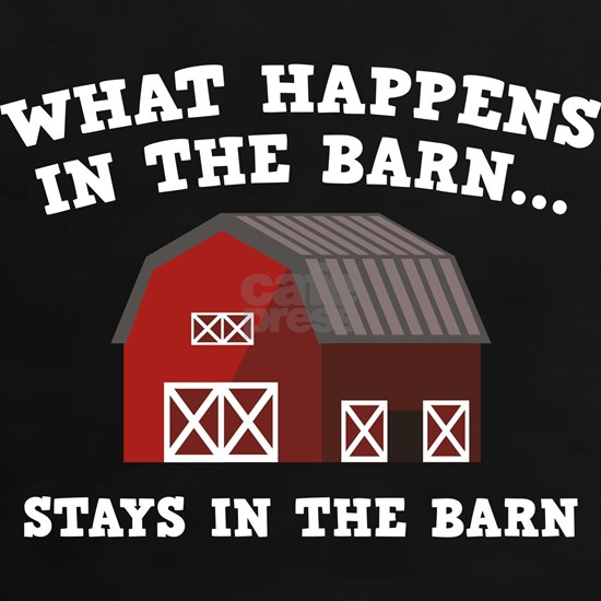 HappensInTheBarn3B