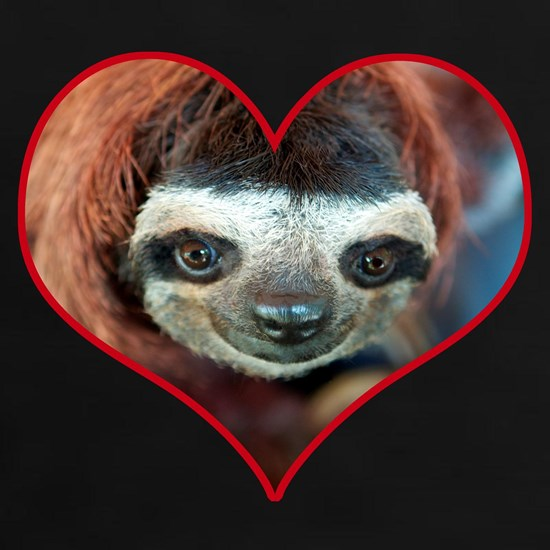 Lola the red headed sloth in heart
