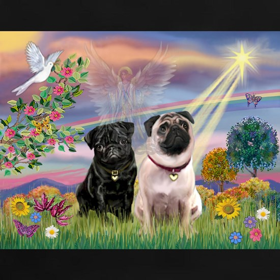 8x10-Cloud-Star-PUG-PR-Blk13-Fawn1