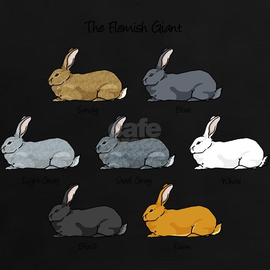 Flemish Giant Rabbit Breed Colors