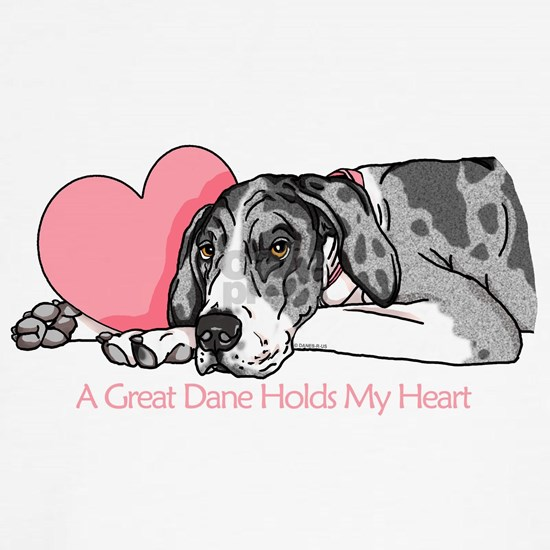 Great Dane Holds My Heart