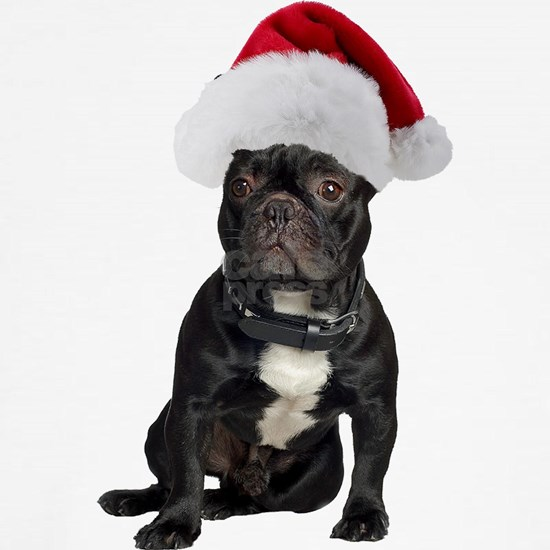 French Bulldog Santa