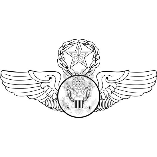 Air Force Enlisted  Chief Aircrew Badge