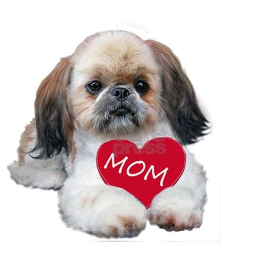 SHIH TZU LOVES MOM