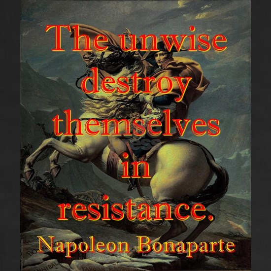 The Unwise Destroy Themselves - Napoleon