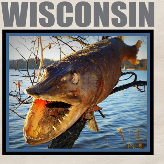 Wisconsin - Fish in Tree
