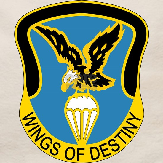 Aviation Brigade - 101st Airborne Division - Wings