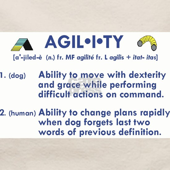 The Definition of Agility