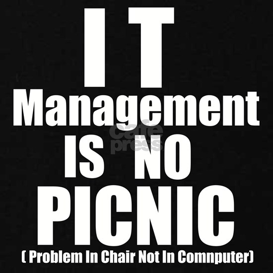 IT management is No Picnic