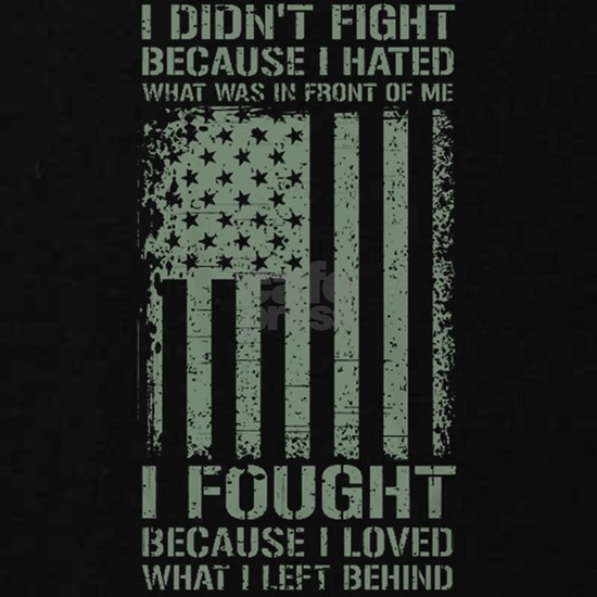 American Veteran -I Didn't Fight Because I Hated W