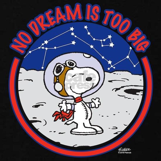 Peanuts No Dream Is Too Big