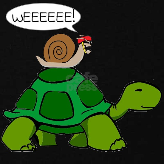 Snail on Turtle
