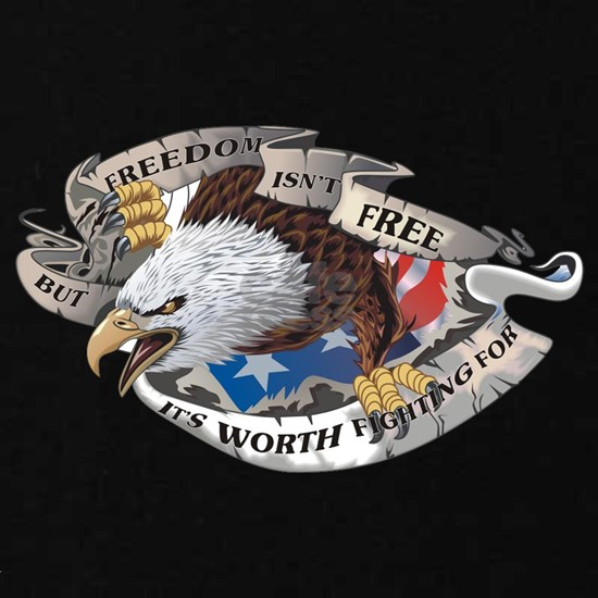Freedom Isnt Free But Its Worth Fighting For