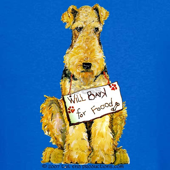 Airedale Lakeland Welsh Terrier