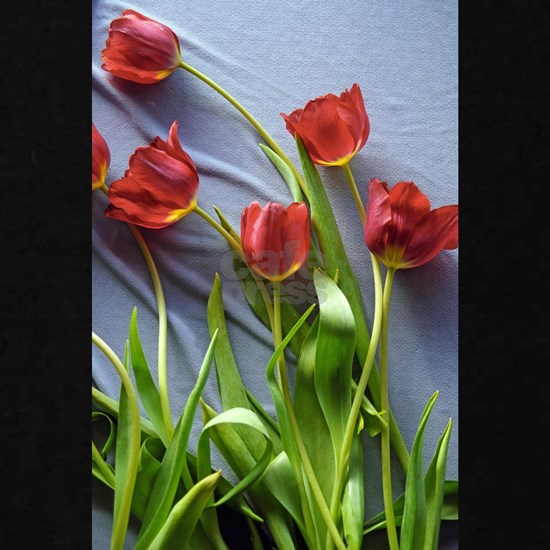 Red Tulips Bouquet