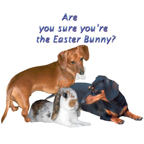 The Easter Bunny Doxie Dogs