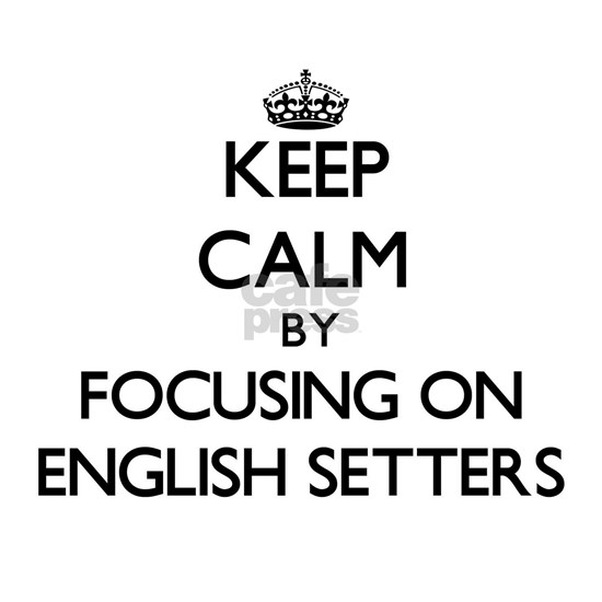 Keep calm by focusing on English Setters