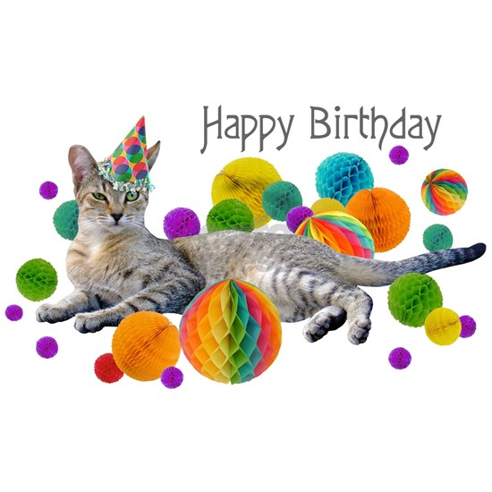 Party Cat Happy Birthday