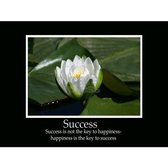 Success Water Lily