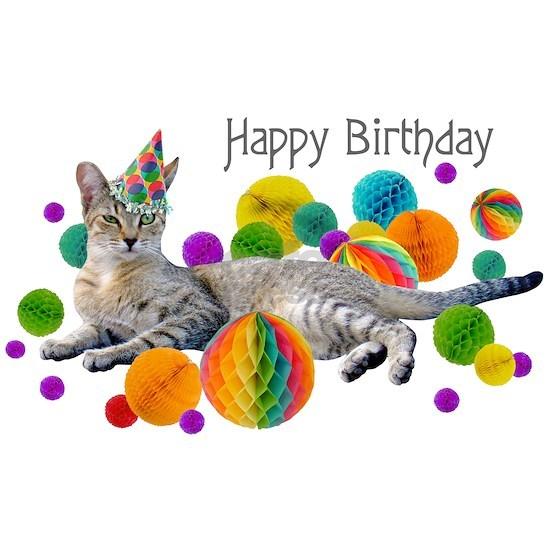 Party Cat Happy Birthday