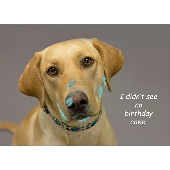 Yellow Lab Cake Face Birthday