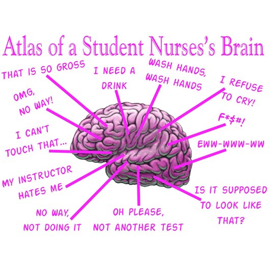 atlas student nurse brain PINK