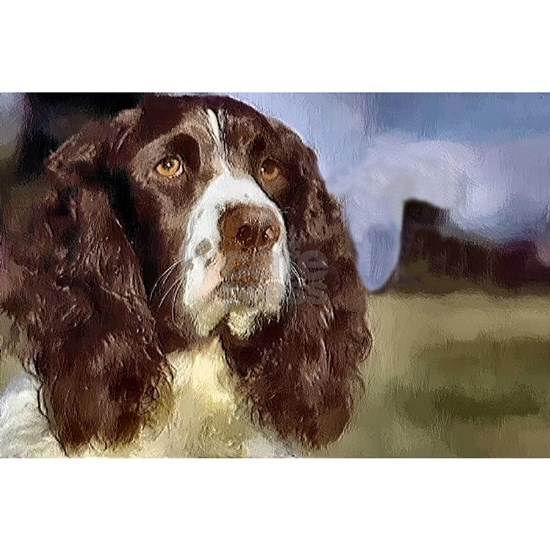 english springer spaniel watercolor