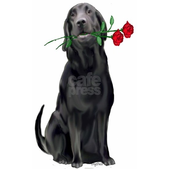 black_lab_with_roses