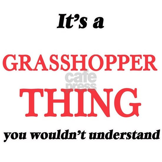 It's a Grasshopper thing, you wouldn't und