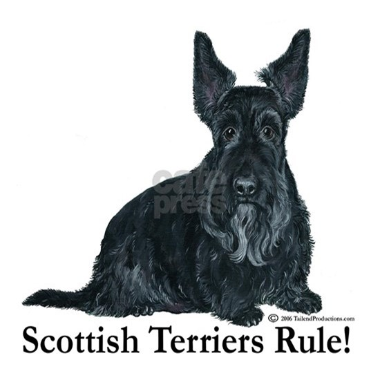 Scottish Terriers Rule   2006