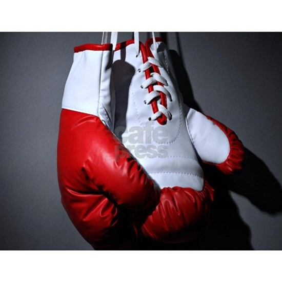 4383ececf Boxing Gloves Banner by WickedDesigns1 - CafePress
