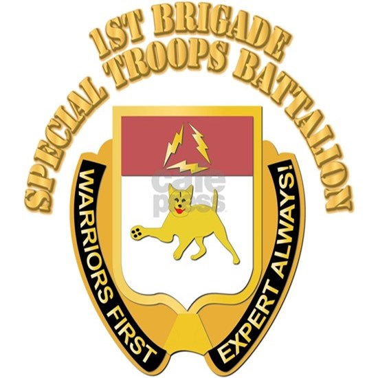 DUI - 1st Brigade - Special Troops Battalion with