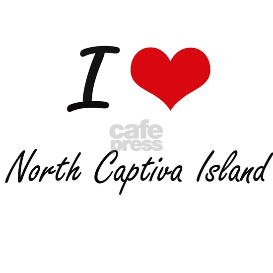 I love North Captiva Island Florida  artistic desi