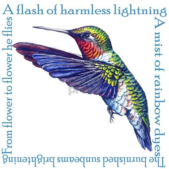 HummingbirdPoem copy