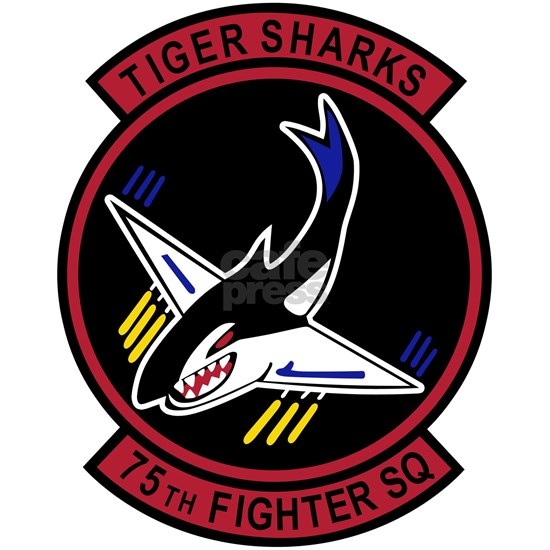 75th_Fighter_Sqn