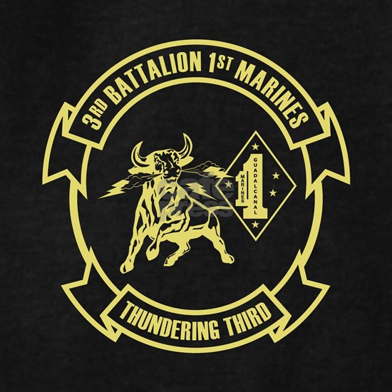 3rd Battalion 1st Marines Front