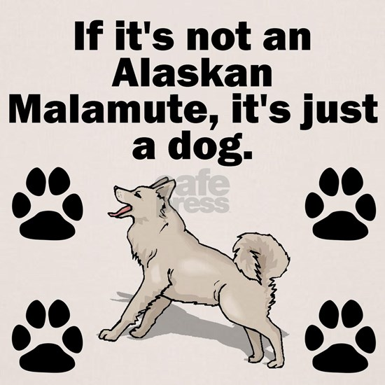 If Its Not An Alaskan Malamute