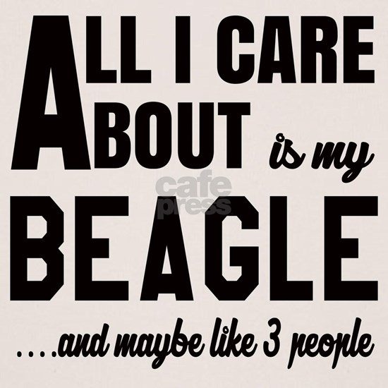 All I care about is my Beagle Dog