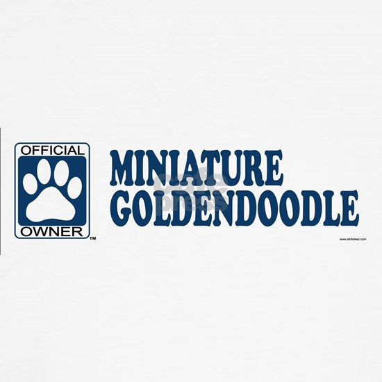 MINIATURE GOLDENDOODLE_blue
