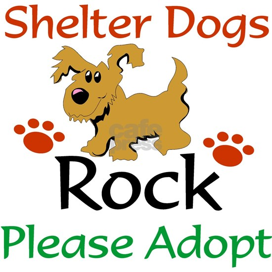 Shelter Dogs Rock Please Adopt