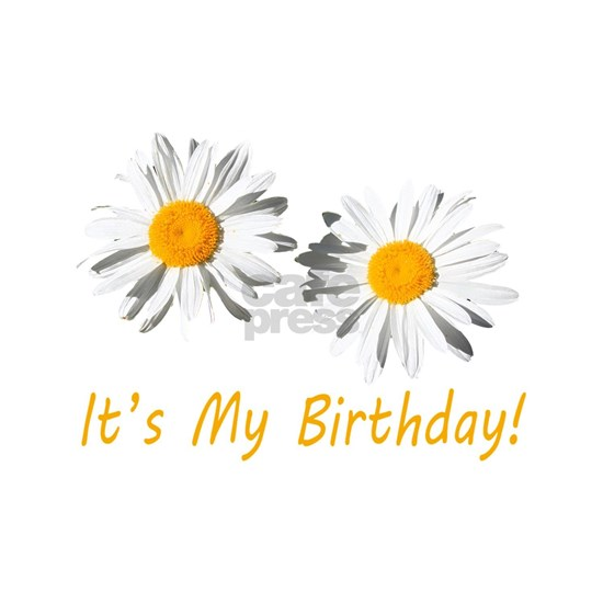 Lovely white daisy flowers, it's my birthday flora