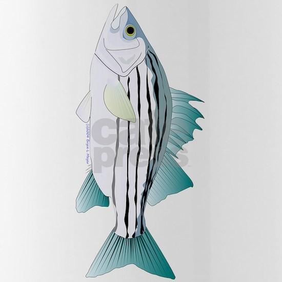 White Bass v