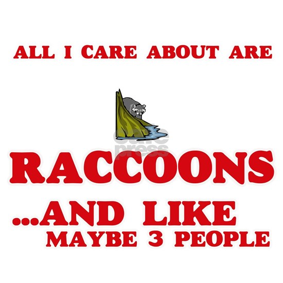 All I care about are Raccoons