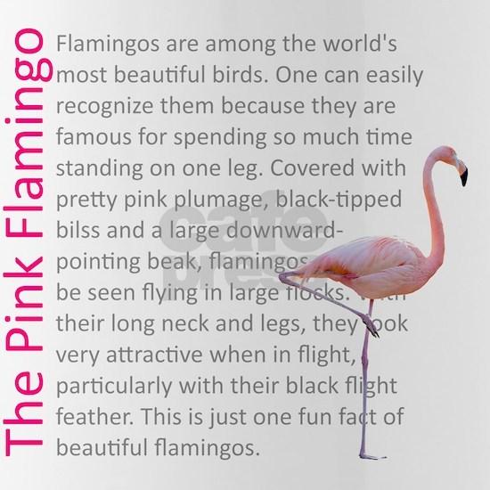 Fun Flamingo Fact