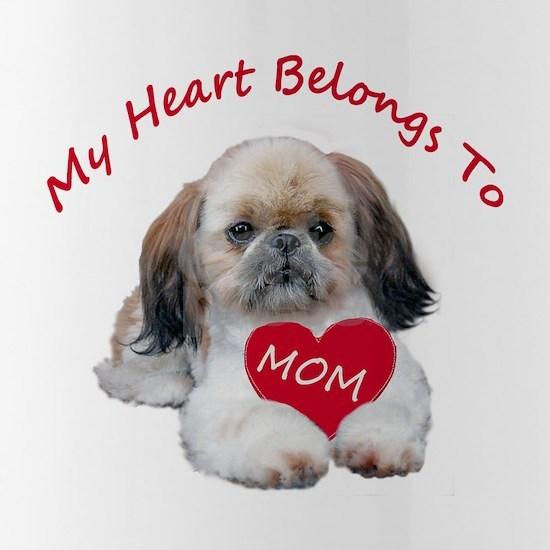 Shih Tzu Belongs To MOM