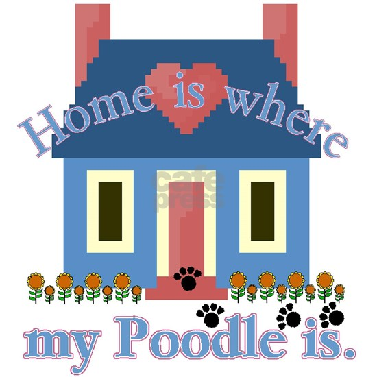 poodle home is white
