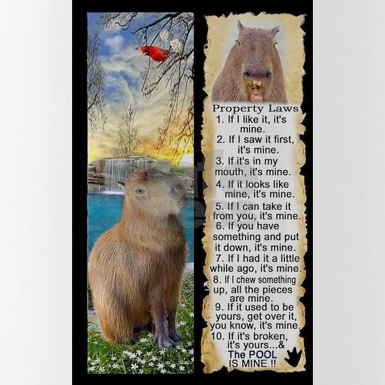 Capybara FUN Property Laws & Rules