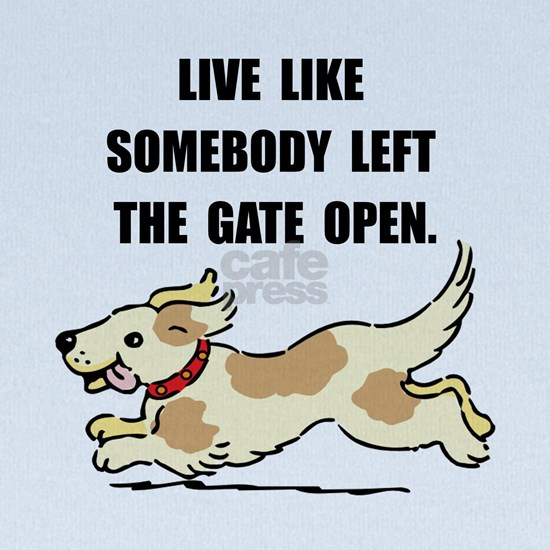 Dog Gate Open